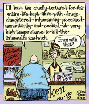 Salmonella Sandwich
