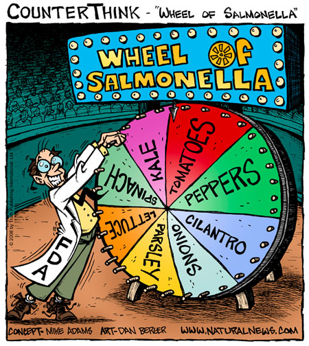 Wheel of Salmonella