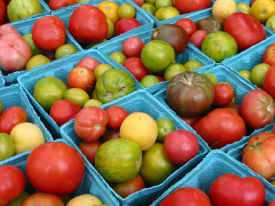 Heirloom tomatoes © Judy Tillinger / istockphoto