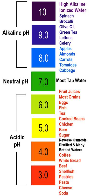 Food pH scale
