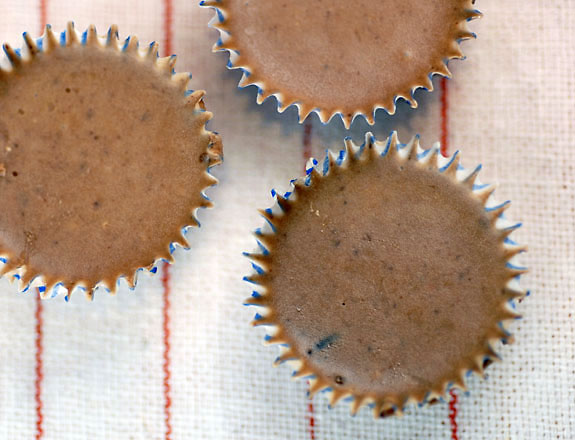 Cranberry chocolate truffles