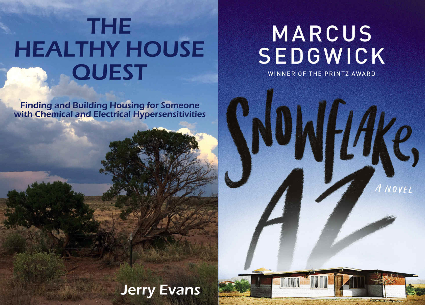 Two new books about Snowflake, Az